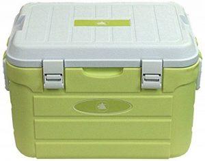 10T Fridgo 30 Glacière passive avec batterie intégrée Jaune Citron 30 L/52 x 36 x 33 cm de la marque 10T image 0 produit