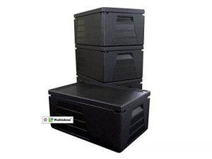 4 x Boite professionnelle isotherme récipient isotherme boite isolante glacière GN 1/1 avec 230 mm de hauteur utile de la marque Ratiobox image 0 produit