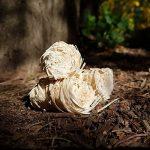 5 kg Allume-feu en laine de bois bio, env. 370-400 pièces. Allume pour cheminée. Idéal pour chauffer la maison de la marque Natural Firelighters image 2 produit
