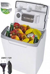 Adler Glacière termoelectrique 30 L, 12/230 V, pour voiture et prise, mini réfrigérateur de la marque Adler image 0 produit