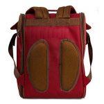 Apollowalker 2 personnes Rouge Sac à dos pique-nique avec sac isotherme avec vaisselle et couverture polaire Red de la marque Apollowalker image 4 produit