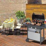 Campingaz Barbecue à Gaz Class 2 LX Vario, 2 Brûleurs, Puissance 7.5kW, Grille et Plancha en Acier Double Emaillage, 2 Tablettes Latérales de la marque Campingaz image 4 produit