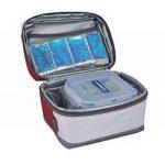 Campingaz Glacière Combo Picnic Freez Box 2L + Flexi Freez Pack, Sac Glacière Isotherm Incluent Accumulateur Froid, Mini Glacière Souple Isotherme, Lunch Bag, Idéal pour le Pique Nic, Randonnée de la marque Campingaz image 1 produit
