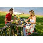 Campingaz Picnic Cooler - Glacière textile isotherme de la marque Campingaz image 3 produit