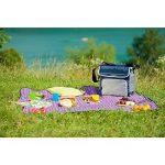 Campingaz Sac Glacière - Fold 'n Cool - 30 Litres - Bleu/Gris de la marque Campingaz image 4 produit