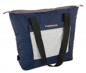 Campingaz Sac Isotherme - Sac à porter - 13 Litres - Bleu/Gris de la marque Campingaz image 0 produit