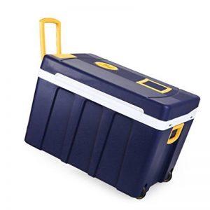 Cqq réfrigérateur voiture 50L 12V DC 220V AC Chauffage frigorifique Réfrigérateur de voiture Mini frigo Petite maison micro frigo Réfrigérateur double usage de voiture Dimensions: 61.5 * 42 * 42cm Dimensions intérieures: 49.5 * 30.5 ** 33cm de la marque R image 0 produit