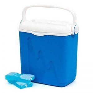 Curver 6702105 Glacière Bleu, 20 Liters de la marque Curver image 0 produit