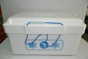 Glacière en Polystyrène Expansé (PSE) avec 2 poignées - 25 litres de la marque T-B image 0 produit