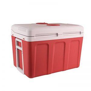 glacière frigo 12v TOP 11 image 0 produit