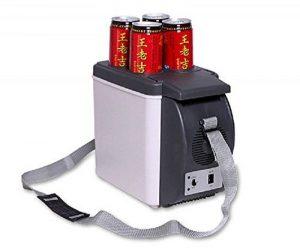 glacière électrique batterie voiture TOP 6 image 0 produit