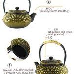 HwaGui théière en fonte japonaise bouilloire infuseur, 0,6L/600ml, pot thé d'or de la marque HwaGui image 2 produit