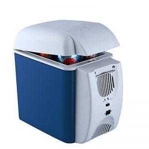 LIQICAI 7.5L Glacière Électrique Portable Sangle de transport Voiture et maison Mini réfrigérateur Chaleur/12V DC (voiture)/220V AC (maison)/36W, Accueillir 330 ml * 9boîtes (taille : For Car+Home) de la marque LIQICAI-BINTONG image 0 produit