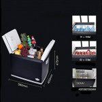 LJ Mini réfrigérateur - 46L réfrigérateur compact contient 62 canettes de 310 ml | de la marque Réfrigérateur voiture image 3 produit