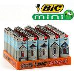Lot de 5 Briquets Mini BIC - Maisonnette Plage de la marque BIC image 1 produit
