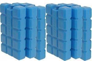 Lot de 6 packs de glace 220 ml/h 12 batteries de la marque Tim Tina image 0 produit