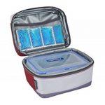mini sac isotherme TOP 4 image 1 produit