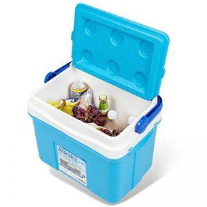 noorsk classique à Box Idéal dans différentes tailles Thermo Box pour voiture et camping de la marque noorsk image 0 produit