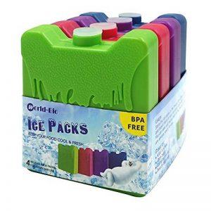 pack de glace pour glacière TOP 10 image 0 produit