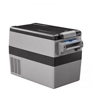 Réfrigérateur Portatif De Réfrigérateur De Réfrigérateur De Compresseur Portatif De Réfrigérateur De Voiture Pour La Voiture Et La Maison de la marque MRSLIU image 0 produit