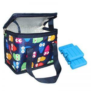 Sac Repas Lunch Bag Sac à Déjeuner Sac Fraîcheur Portable Isotherme chouette bleu avec 3 Mini congélateur blocs de la marque TEAMOOK image 0 produit