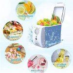 SL&BX Réfrigérateur de voiture,Réfrigérateurs de réfrigérateur portable mini réfrigérateur glacière & réchauffeur inox mini-frigo insuline médecine-blanc 32x18x30cm(13x7x12inch) de la marque SL&BX image 1 produit
