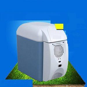 SL&BX Réfrigérateur de voiture,Réfrigérateurs de réfrigérateur portable mini réfrigérateur glacière & réchauffeur inox mini-frigo insuline médecine-blanc 32x18x30cm(13x7x12inch) de la marque SL&BX image 0 produit