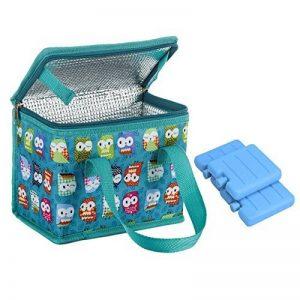 TEAMOOK Sac Repas Lunch Bag Sac à Déjeuner Sac Fraîcheur Portable Isotherme with 3 Réutilisable Mini Blocs de glace de la marque TEAMOOK image 0 produit