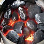Tivoli barbecue gril démarreur/élément chauffant en acier inoxydable/600W/charbon prêt en 10 minutes/facile à nettoyer de la marque Tivoli image 3 produit