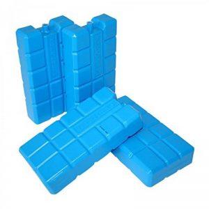 ToCi Haushalt kühlakkus avec chacun 750ml | réfrigérants pour la Sac isotherme ou Glacière, 4 de la marque ToCi image 0 produit