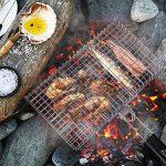 WolfWise Grand Grille de Barbecue Portable avec Brosse en Acier Inoxydable 430 pour Saucisse Poisson, Poignée en Bois Pliable, 43*53.2* 3.7cm de la marque WolfWise image 1 produit