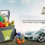 woyao13deng Réfrigérateur Glacière électrique, mini Frigo Voiture pour voiture et/électronique Réfrigérateur/réfrigérateur voiture/Mini Réfrigérateur de la marque woyao13deng image 3 produit